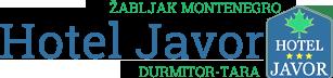 Hotel Javor
